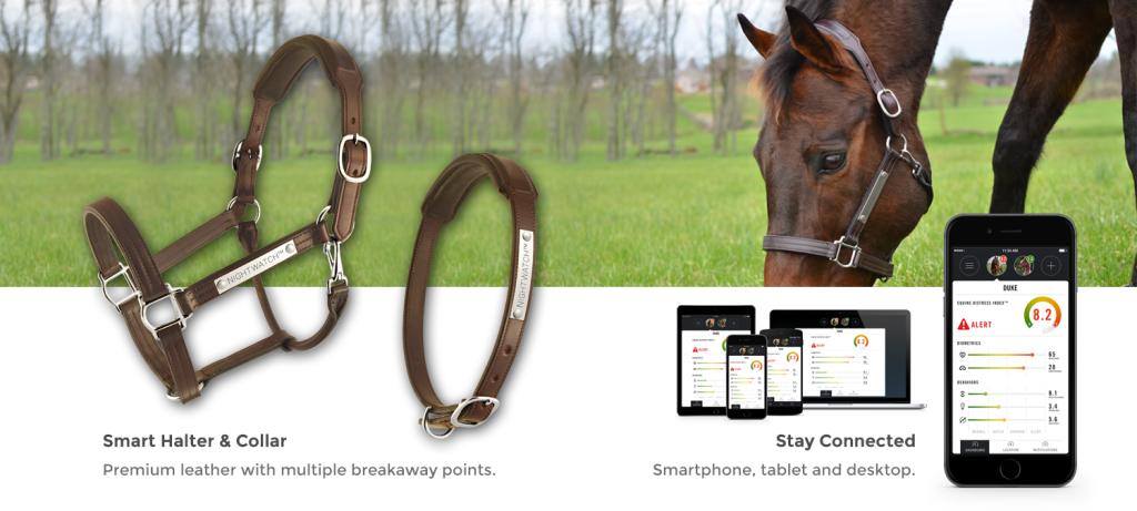 Night Watch Horse App