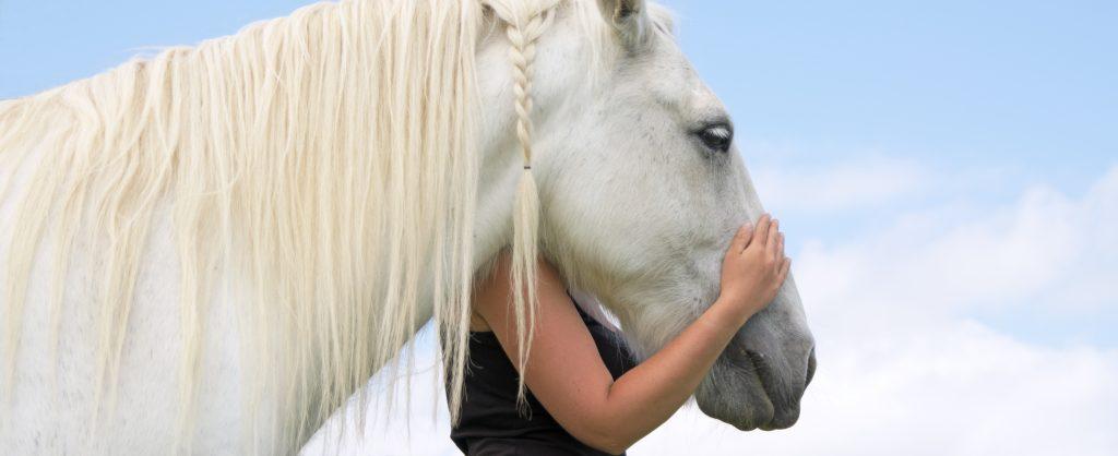 important benefits of therapeutic horseback riding