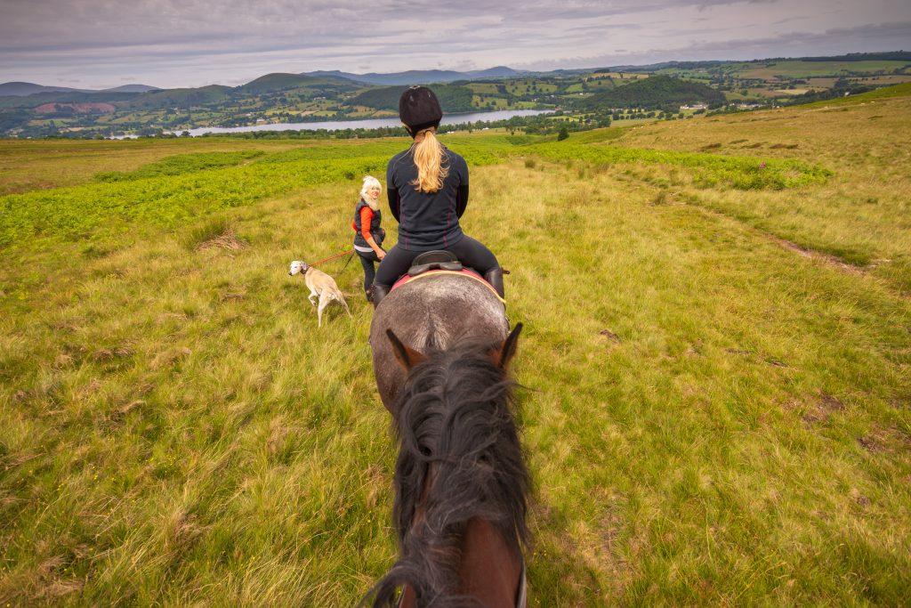 Horse Riding Lake District