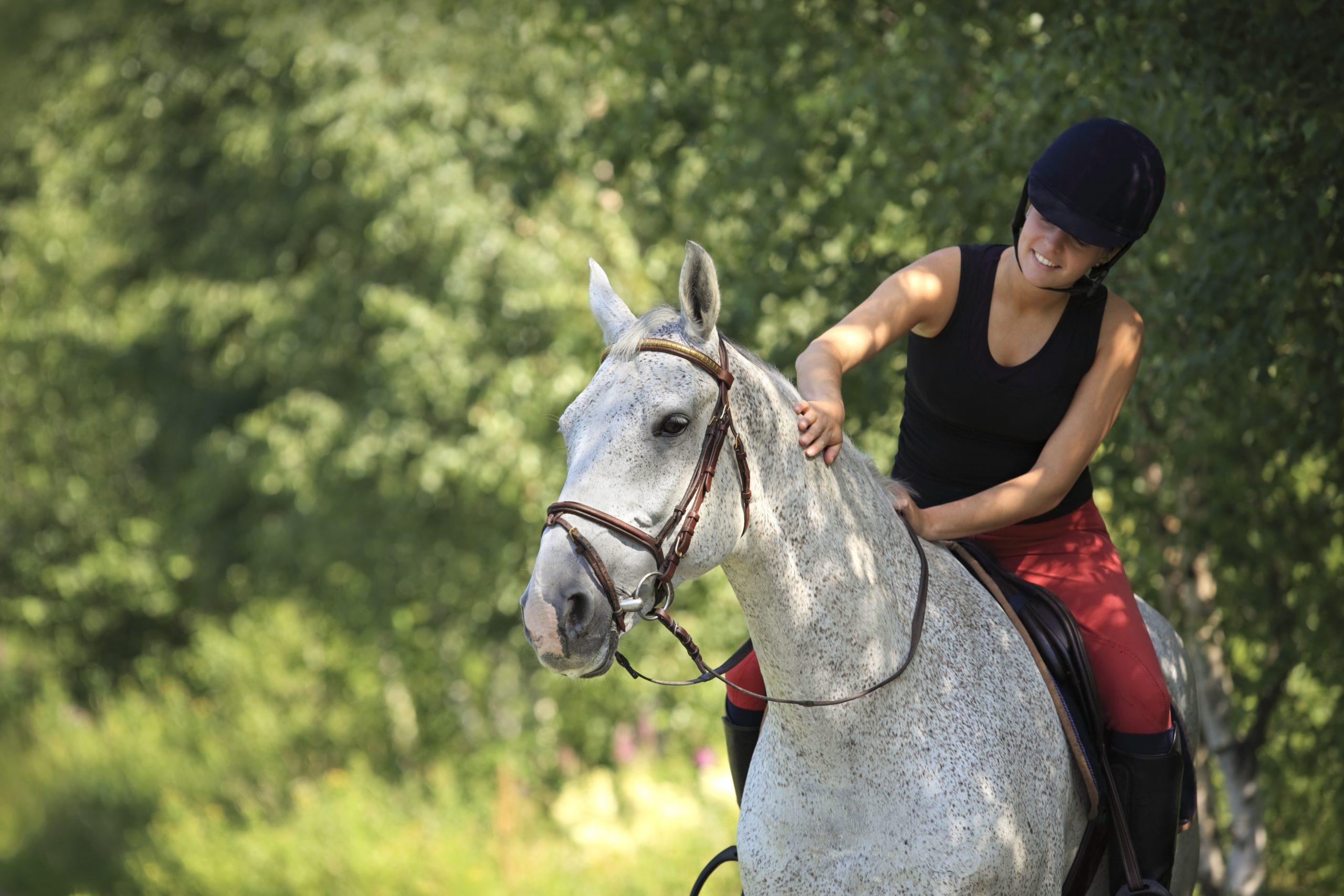 natural light horse riding photo