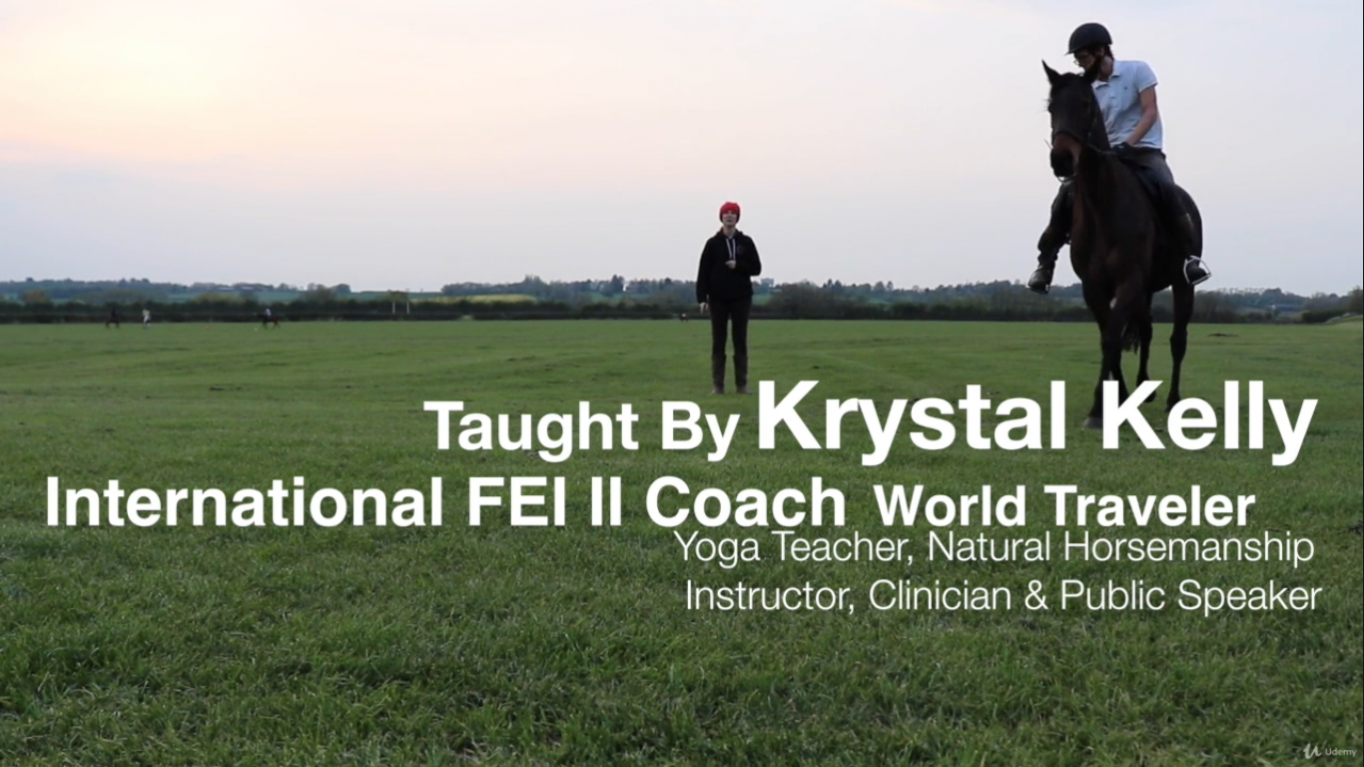 Online Horse Riding Lessons Top 10 Resources Horse Riding Network