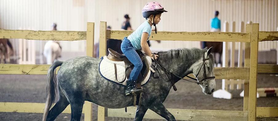 Horseback Riding Camp at Liberty Horse Farm Ohio