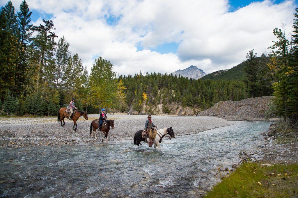 banff trail riders horseback riding