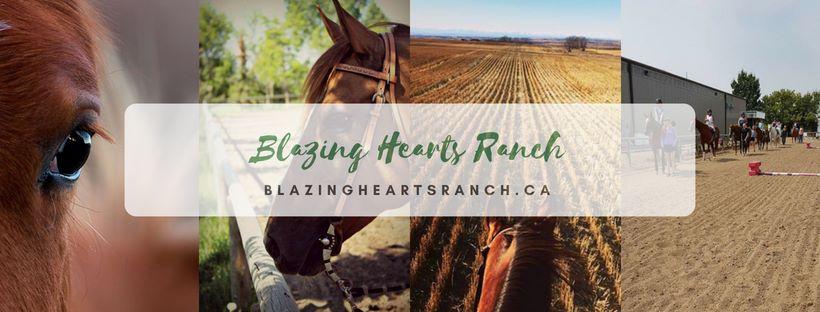 blazing hearts ranch calgary