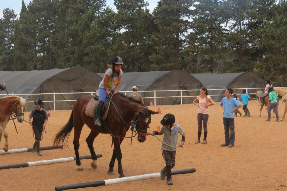 what are equine assisted activities and therapy