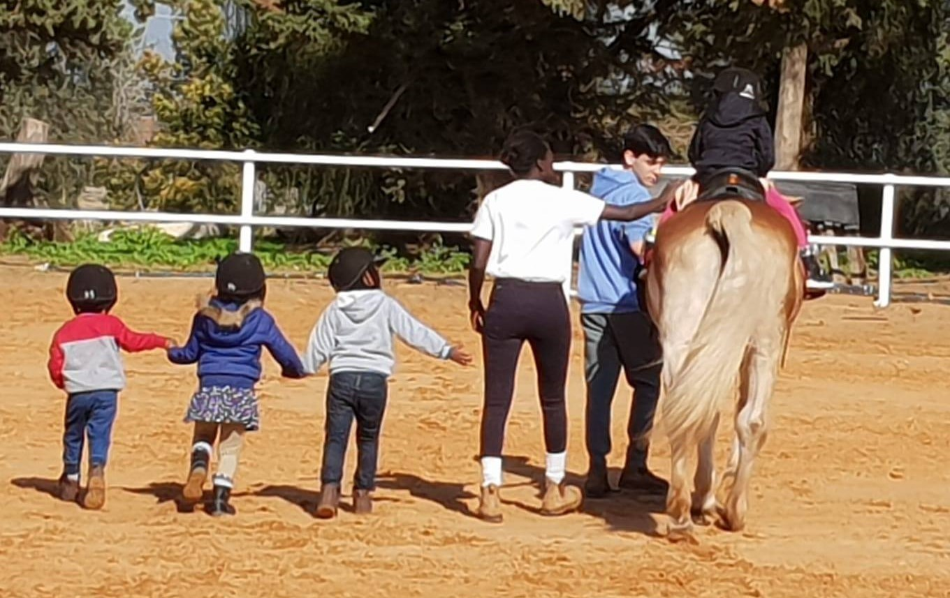 what-is-hippotherapy