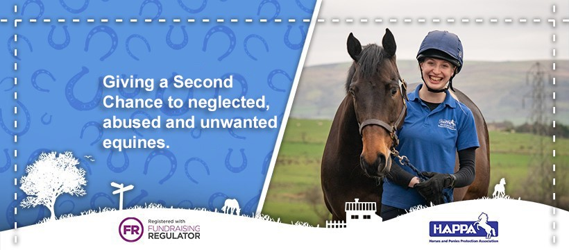 happa horse and pony protection charity