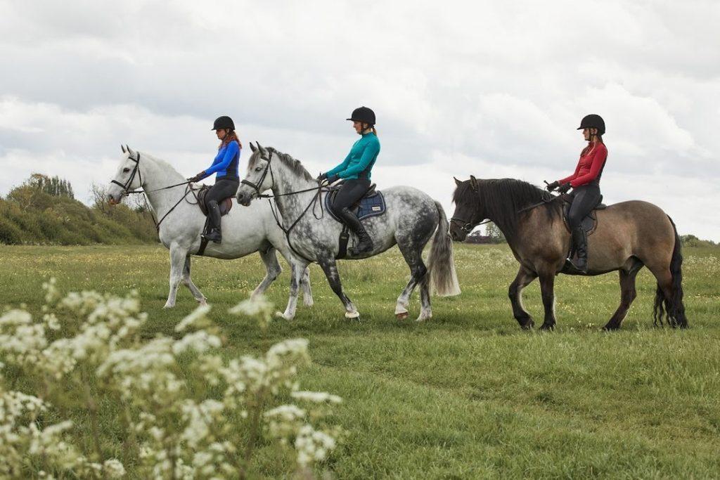 kaia equine eco friendly horse riding leggings