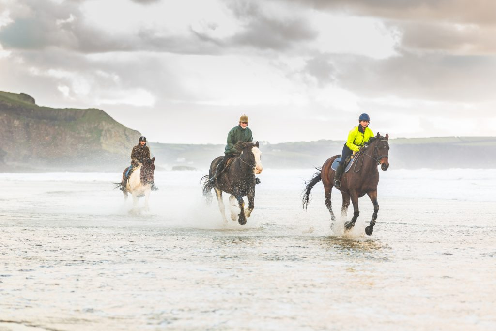 sustainable equestrian clothing products
